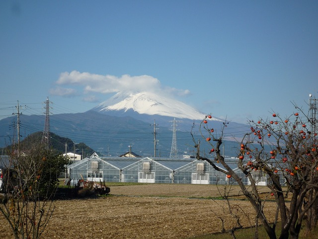 P1030759 富士山.jpg