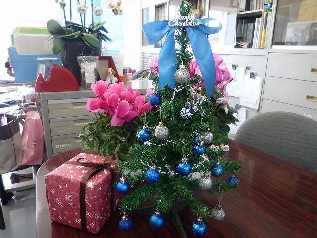P1040608 クリスマスツリー.jpg
