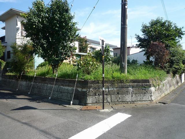 P1040990 伊豆の国市中條.jpg